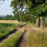 Wandel route